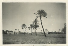 Lot 18 Photos Argentiques Tunisie 1934/35