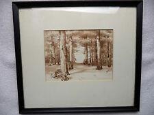 Lovely Framed Watercolor Painting Pine Forest in Winter Snow On Trees
