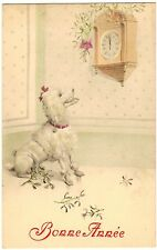 POSTCARD DOG POODLE WATCHES CLOCK AT MIDNIGHT BONNE ANNEE NEW YEARS GREETINGS