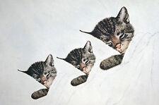 Gruenwald CHESSIE and KITTENS Nip and TUCK c1930 - Matted CAT KITTEN Art Print