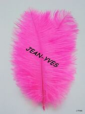 "10 BRIGHT PINK OSTRICH FEATHERS 14-16""L"