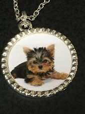 "Yorkshire Terrier Puppy on White Charm Tibetan Silver with 18"" Necklace BIN"