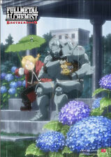 Fullmetal Alchemist Ed and Al In the Rain Poster Wall Scroll 27.8 x 19.7 inches