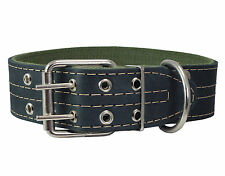 """Real Leather Dog Collar Padded 1.5"""" Wide  22.5""""-26.5"""" neck size Great Dane"""