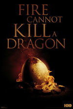 *NEW* Game of Thrones Wall Poster - Fire Cannot Kill A Dragon - Dragon Egg