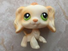 Littlest Pet Shop RARE Cocker Spaniel Dog Puppy #347 Yellow Green Eyes Magnet
