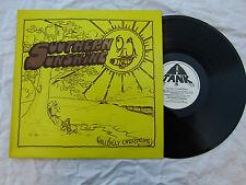 SOUTHERN SUNSHINE LP HILLBILLY OVERDRIVE tank 350.. ..... 33rpm / folk