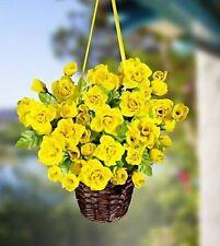 Gelbe Blumen im Topf Hängeampel Blumenampel Trollblume Kunstblumen Ampel
