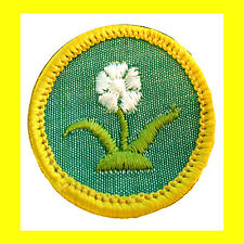 ROCK & MINERAL Cadette Girl Scout NEW Badge Patch Rocks Crystals Multi=1 Ship
