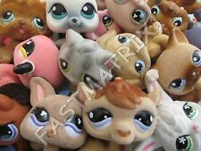 Littlest Pet Shop Lot of 3 RANDOM SURPRISE Fuzzy Dog Cat Bunny Pets