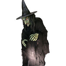 Evil Witch Ultimate Hag Adult Halloween Costume Mask Gloves and Rotting Shirt