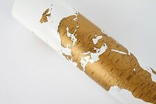 Large Size Personalized Gold Scratch-Off World Map Poster Travel