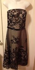 New White House Black Market Champagne Chiffon & Black Lace Pin-Up Dress Size 8
