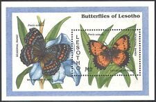 Lesotho 1993 Seasonal Pansy Butterfly/Butterflies/Insects/Nature 1v m/s (b1291)