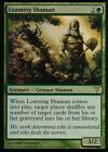 Loaming Shaman FOIL | NM | Dissension | Magic MTG