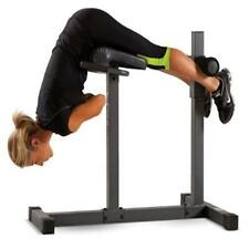 Apex Roman Chair/Hyper Extension Bench Sit Up Exercise