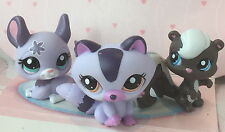 ~❤️~Littlest Pet Shop Bulk Set of 3 Woodland RACCOON SKUNK CHINCHILLA~❤️~