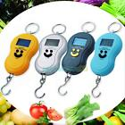 10g-40Kg Portable Digital Hanging Luggage Fishing Balance Pocket Weight Scale