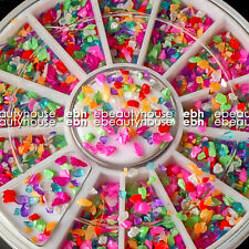 12 Mixed Colors Nail Art Acrylic Powder Particle Crushed Shell+Wheel #EB-006