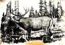 Artwork White Tail Deer Buck on Tanned Rabbit Pelt Wilderness Lodge Cabin Decor
