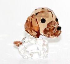 Swarovski Figur Hund Welpen Max der Beagle Original Verpackung 5063332