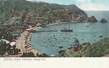 (LAM) P - Santa Catalina Island, CA - Looking Down on Boats in the Bay