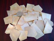 Top Quality Gold Mother of Pearl Shell Blanks 4 Inlay