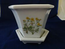 UNBRANDED CERAMIC FLOWER POT WITH DRAINAGE SAUCER-FLORAL DESIGN IMPRINT-WINDOW