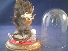 SALE*Taxidermy Snake-chicken foot-skull glass dome display//goth/witch/spells