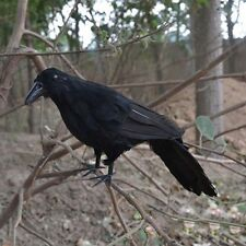 Black Raven Realistic Feathered Crow Halloween Accessory Props New Garden Decor