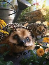 3D Picture hedgehogs in garden Size 39 x 29 cm approx New