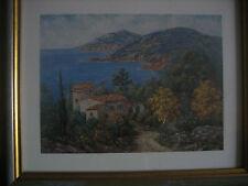 ESTEREL MIMOSAS EN FLEURS CADRE  PHOTO A SUSPENDRE 29,5 cm x 35,5 cm