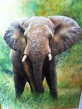 """DAVID STRIBBLING, Large Oil on Canvas, Male African Elephant ,32""""X24"""",  Signed"""