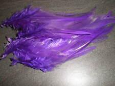 lot de 10 plumes violet 10 a 12 cm