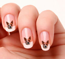 20 Nail Art Decals Transfers Stickers #699 - Australian Red Cattle Dog