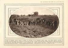 1916 Cameroons Sacks As Uniforms Masai Native Scouts Bullock Carts