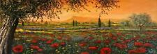 Pianura in fiore by Tebo Marzari 12x36 Canvas Poppies Flowers Tuscan Landscape