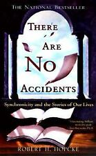 There Are No Accidents: Synchronicity and the Stories of Our Lives Hopcke, Robe