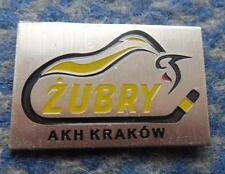 ZUBRY KRAKOW ICE HOCKEY POLAND CLUB PIN BADGE