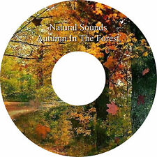Natural Sounds Autumn Forest CD Relaxation Sleep Aid Stress Relief Heal Calming