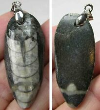 #10 Morocco 100% Natural Hand Carved Orthoceras Fossil Squid Specimen Pendant