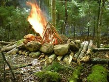 Wilderness Survival Skills 101+ Books CD Homesteading Prepping Camping NWO Prep