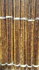 Bambusrohr  7-8 cm 1m Bambusrohre Bambusstange Bambusstangen Bambushalm Bambus