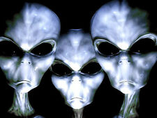 "3.25"" GRAYS ALIENS FACES Sticker / Decal. UFO, Area 51 Sci-fi Monsters for bong"