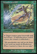 Weatherseed Elf X4 EX/NM Urza's Legacy MTG Magic Cards Green Common