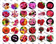 "30 Precut 1"" Flowers Bottle cap Images Set 1"