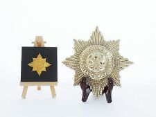 Irish Guards - LARGE Solid Brass display Cap Star (14.5cm x 14.5cm)
