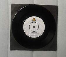 "Sonic Youth Providence Promo 7"" Ltd"