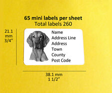 Hungarian Vizsla  Dog 260 Mini Personalised Address Labels Stickers