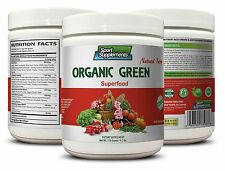 Super Plant - Organic Greens Powder Berry 9.7oz  - Nature Green Food 1C